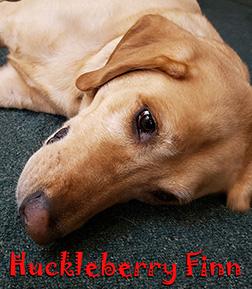 huckleberry-sm2